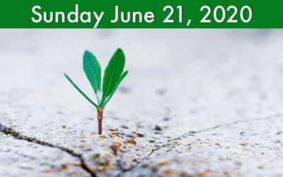 Virtual Worship for Sunday, June 21 2020
