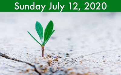 Virtual Worship July 12, 2020
