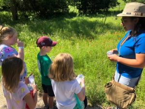 children with teacher in meadow