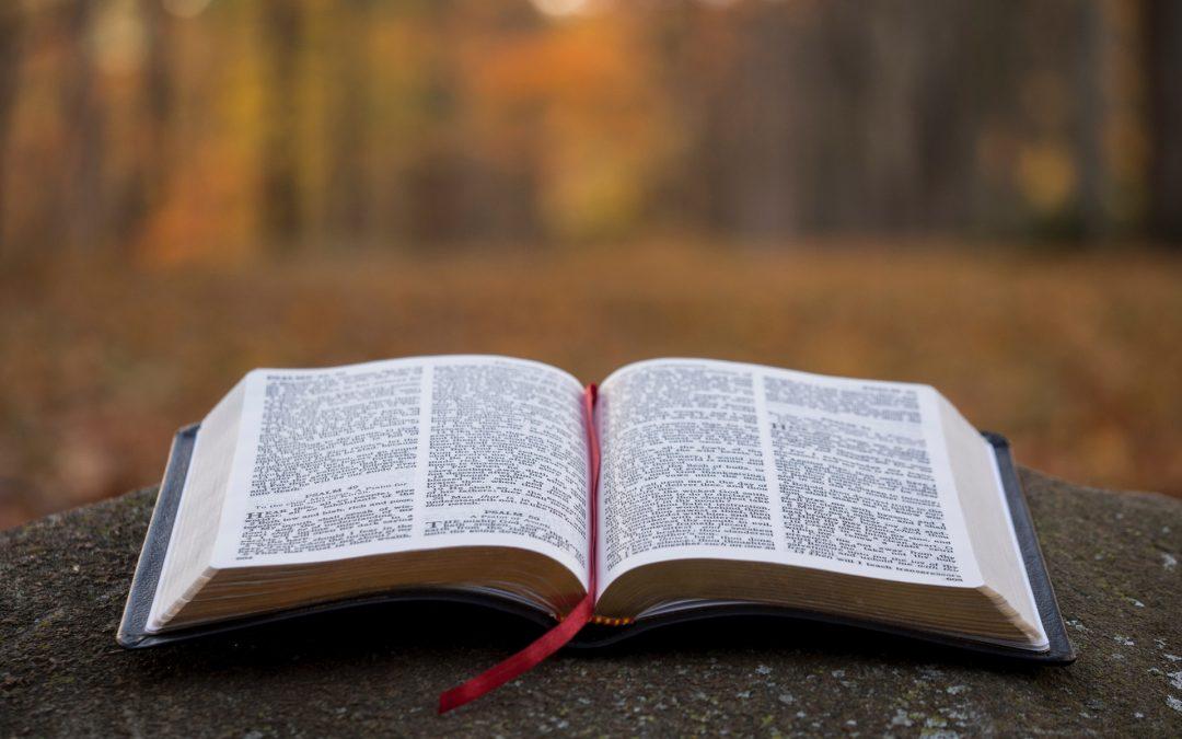 Incarnation Virtual Advent Study